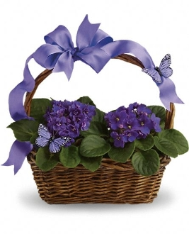 """Violet and Butterly Garden Basket"" - Deluxe"